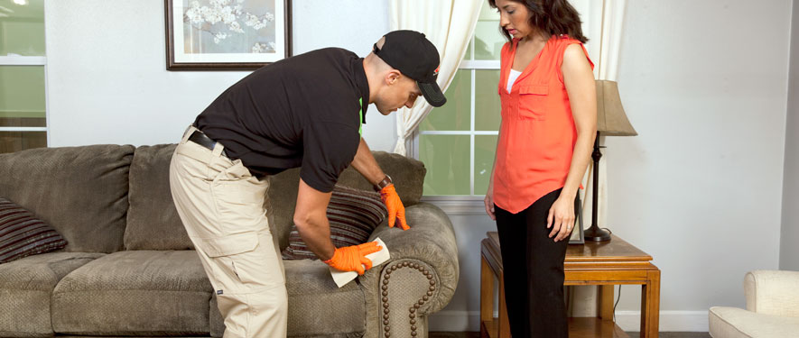 Golden, CO carpet upholstery cleaning