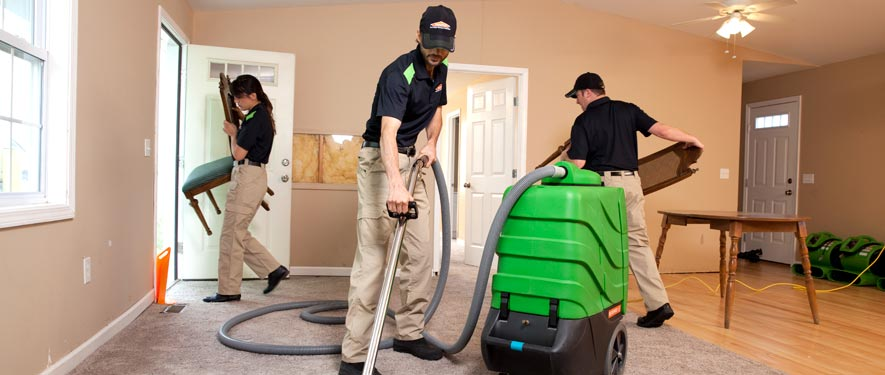 Golden, CO cleaning services